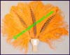 Fans Hand Feather