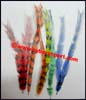 Accessory Feather Pheasant Tail