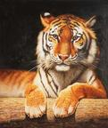 Zoo Oil Painting