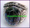 Ring Abalone Shell
