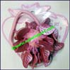 Plastic Elastic Pony Holder Hair Ornament